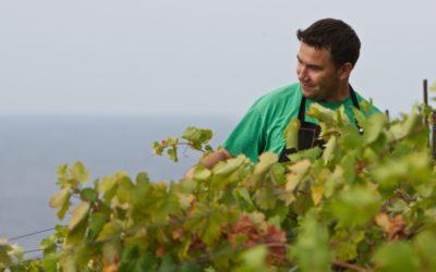 winetours15